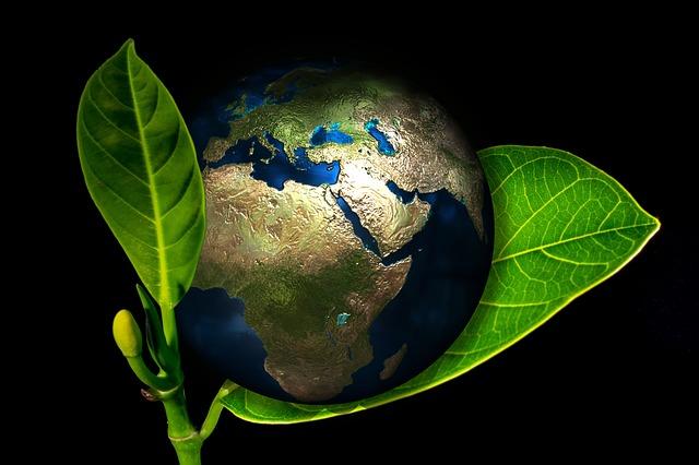 Ekologické uklízení