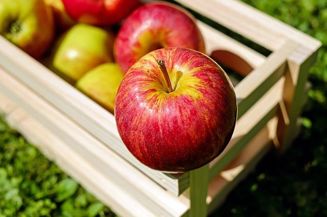 bedýnka jablek